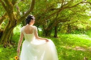 ドレスを着た花嫁の後ろ姿
